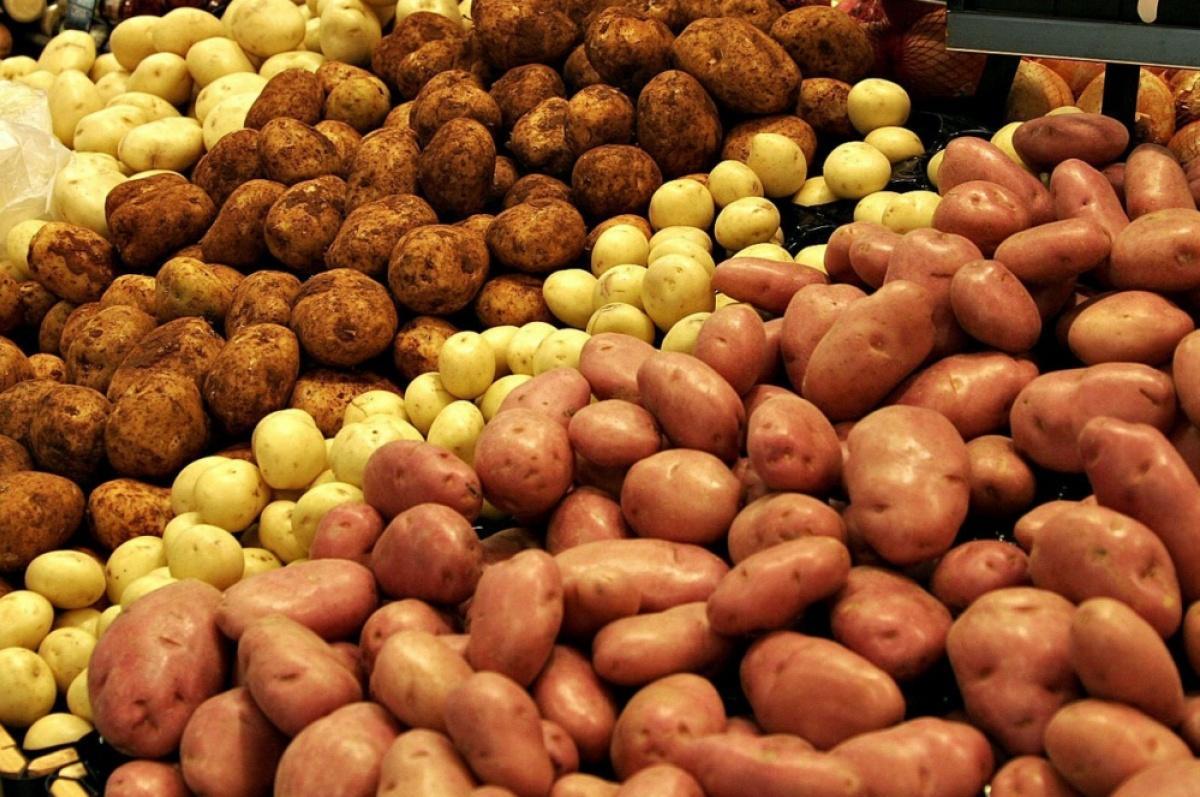 Куплю картоплю